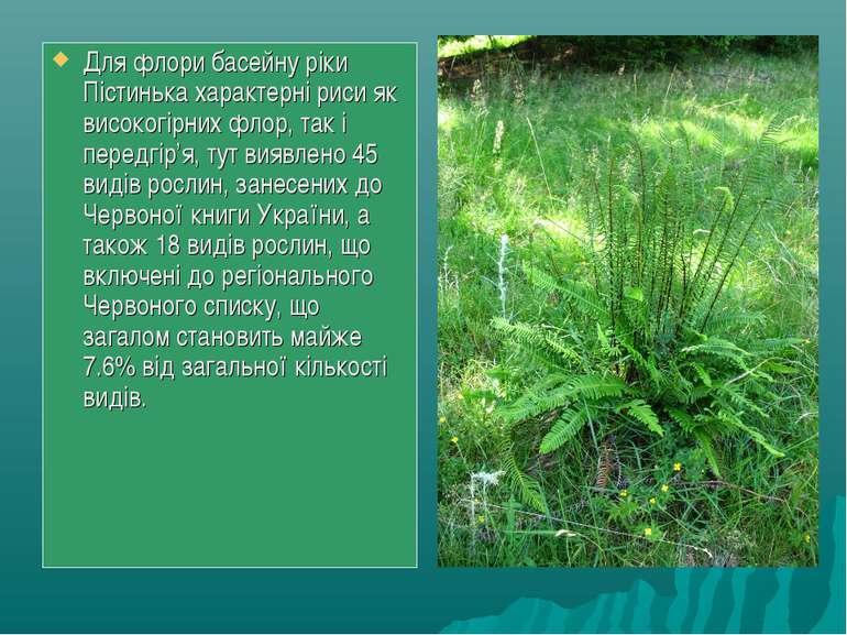 Для флори басейну ріки Пістинька характерні риси як високогірних флор, так і ...