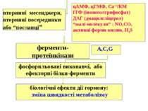 """вторинні месенджери, вторинні посередники або """"посланці"""" цАМФ, цГМФ, Са+2/КМ ..."""