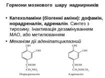 Гормони мозкового шару наднирників Катехоламіни (біогенні аміни): дофамін, но...