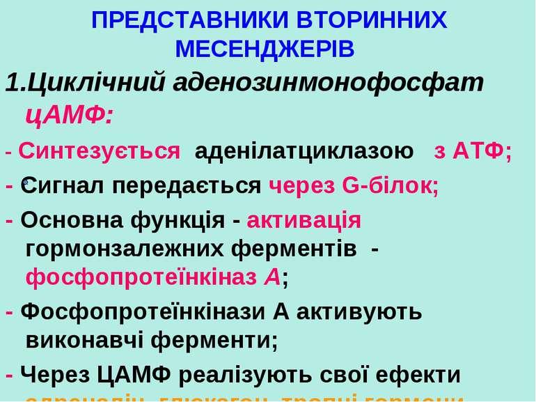 ПРЕДСТАВНИКИ ВТОРИННИХ МЕСЕНДЖЕРІВ 1.Циклічний аденозинмонофосфат цАМФ: - Син...