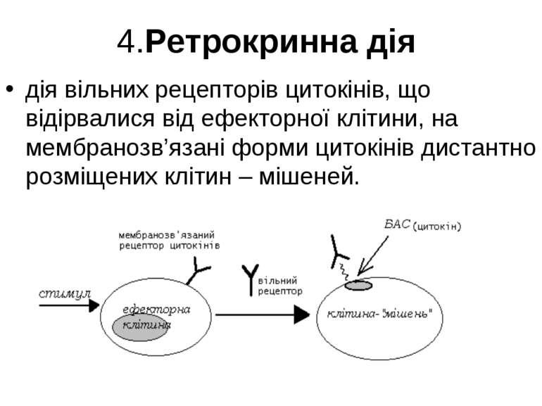 4.Ретрокринна дія дія вільних рецепторів цитокінів, що відірвалися від ефекто...