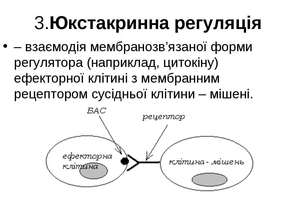 3.Юкстакринна регуляція – взаємодія мембранозв'язаної форми регулятора (напри...