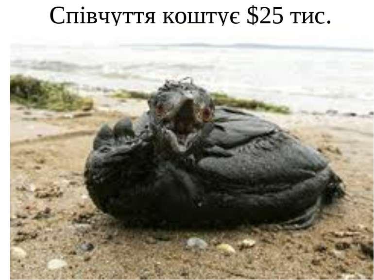 Співчуття коштує $25 тис.