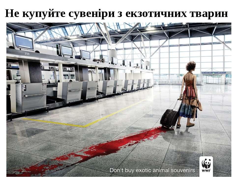 Не купуйте сувеніри з екзотичних тварин