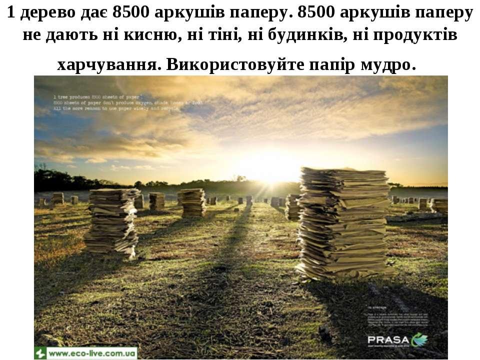 1 дерево дає 8500 аркушів паперу. 8500 аркушів паперу не дають ні кисню, ні т...