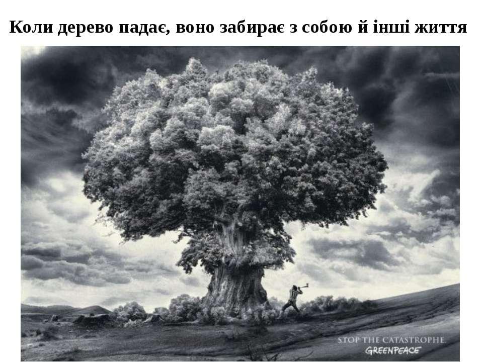 Коли дерево падає, воно забирає з собою й інші життя