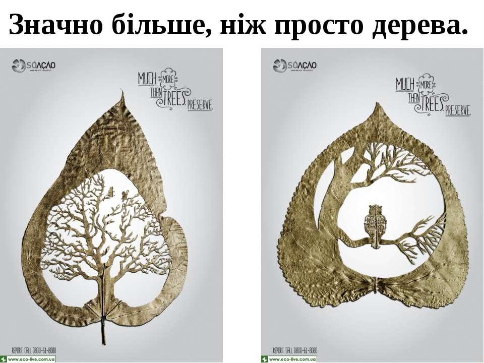 Значно більше, ніж просто дерева.