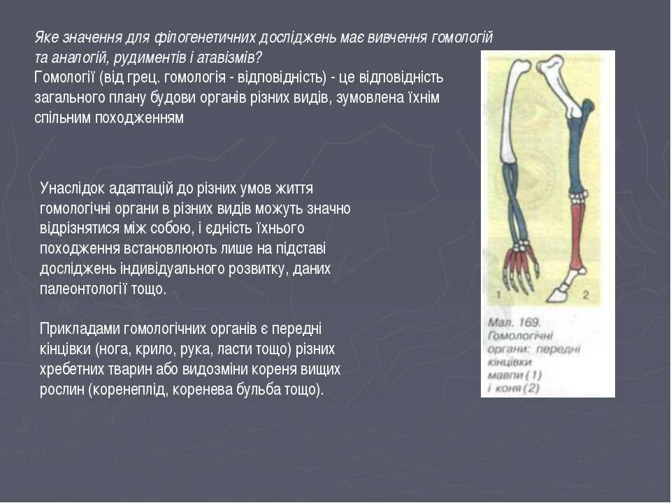 Яке значення для філогенетичних досліджень має вивчення гомологій та аналогій...