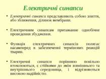 Електричні синапси Електричні синапси представляють собою злиття, або зближен...