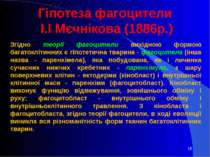 Гіпотеза фагоцители І.І Мєчнікова (1886р.) Згідно теорії фагоцители вихідною ...