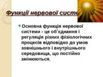 Функції нервової системи Основна функція нервової системи - це об єднання і р...