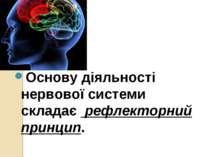 Основу діяльності нервової системи складає рефлекторний принцип.