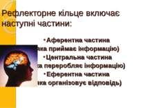 Рефлекторне кільце включає наступні частини: Аферентна частина (яка приймає і...