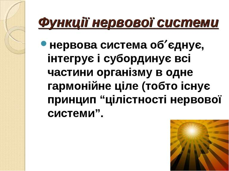 Функції нервової системи нервова система об єднує, інтегрує і субординує всі ...