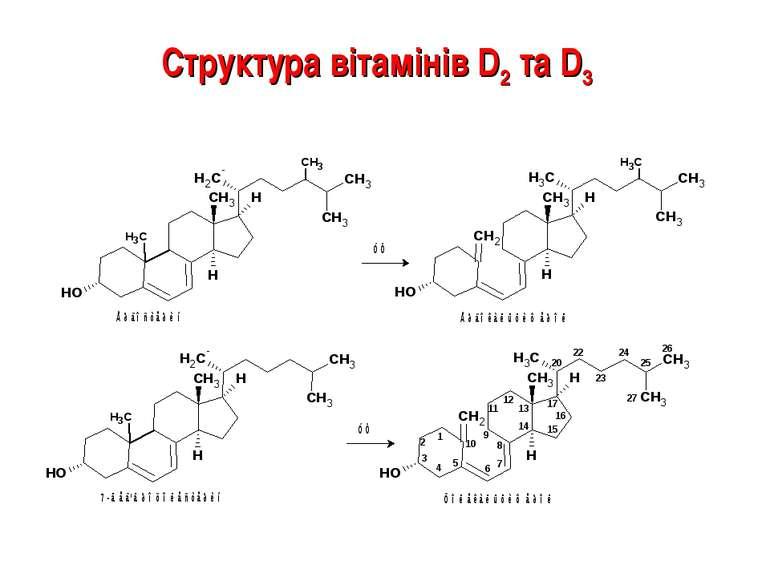 Структура вітамінів D2 та D3