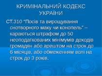 """КРИМІНАЛЬНИЙ КОДЕКС УКРАЇНИ СТ.310 """"Посів та вирощування снотворного маку чи ..."""
