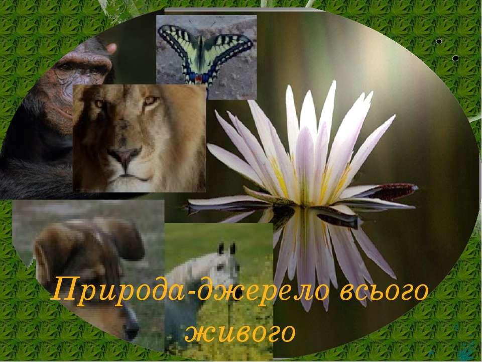 Природа-джерело всього живого