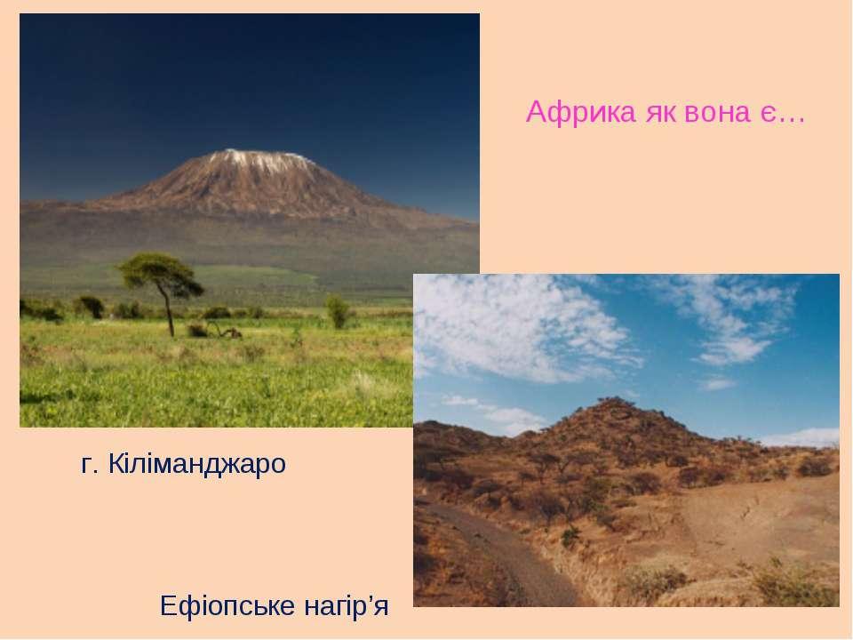 Африка як вона є… г. Кіліманджаро Ефіопське нагір'я
