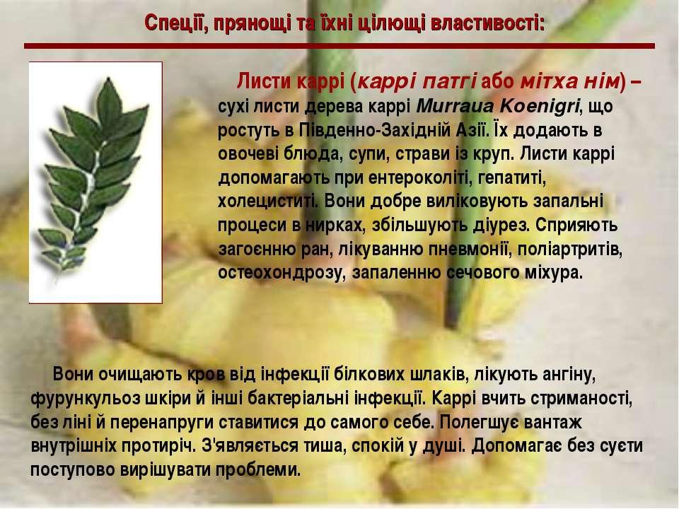 Спеції, прянощі та їхні цілющі властивості: Листи каррі (каррі патгі або мітх...