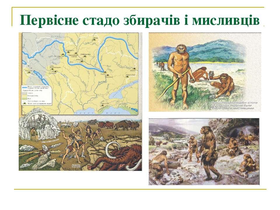 Первісне стадо збирачів і мисливців