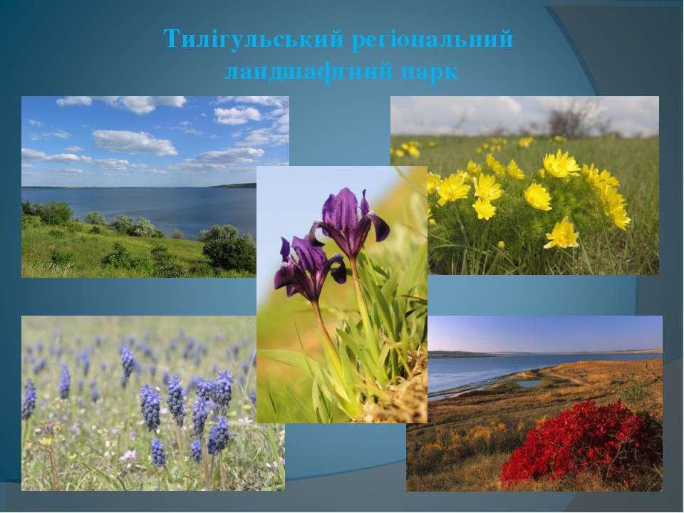 Тилігульський регіональний ландшафтний парк