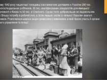 У лютому 1942 року нацистські посадовці вже вимагали доставити з України 290 ...