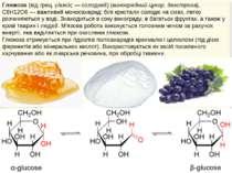 Глюкоза (від грец. γλυκύς— солодкий) (виноградний цукор, декстроза), С6Н12О6...