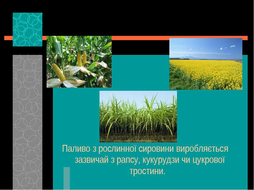 Паливо з рослинної сировини виробляється зазвичай з рапсу, кукурудзи чи цукро...