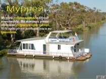 7 Муррей судноплавний в період повноводдя. На витоках річки збудовані гідроел...