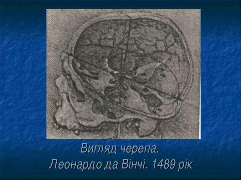 Вигляд черепа. Леонардо да Вінчі. 1489 рік