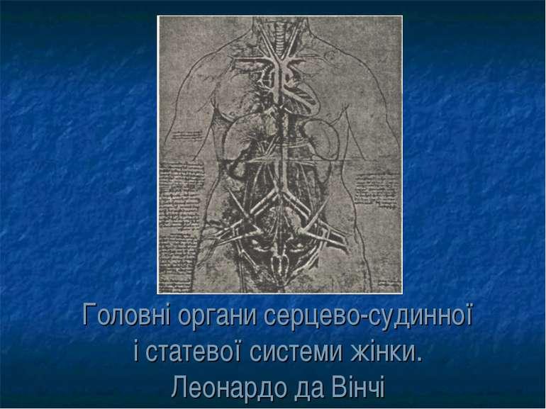 Головні органи серцево-судинної і статевої системи жінки. Леонардо да Вінчі