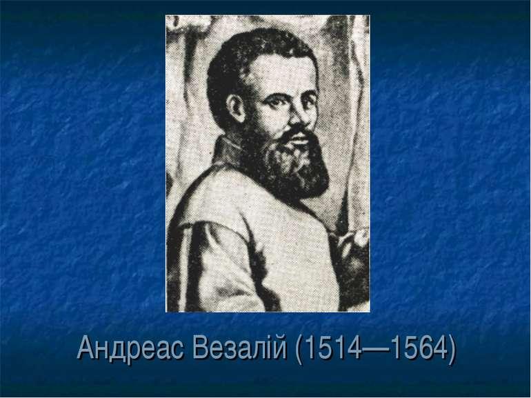 Андреас Везалій (1514—1564)