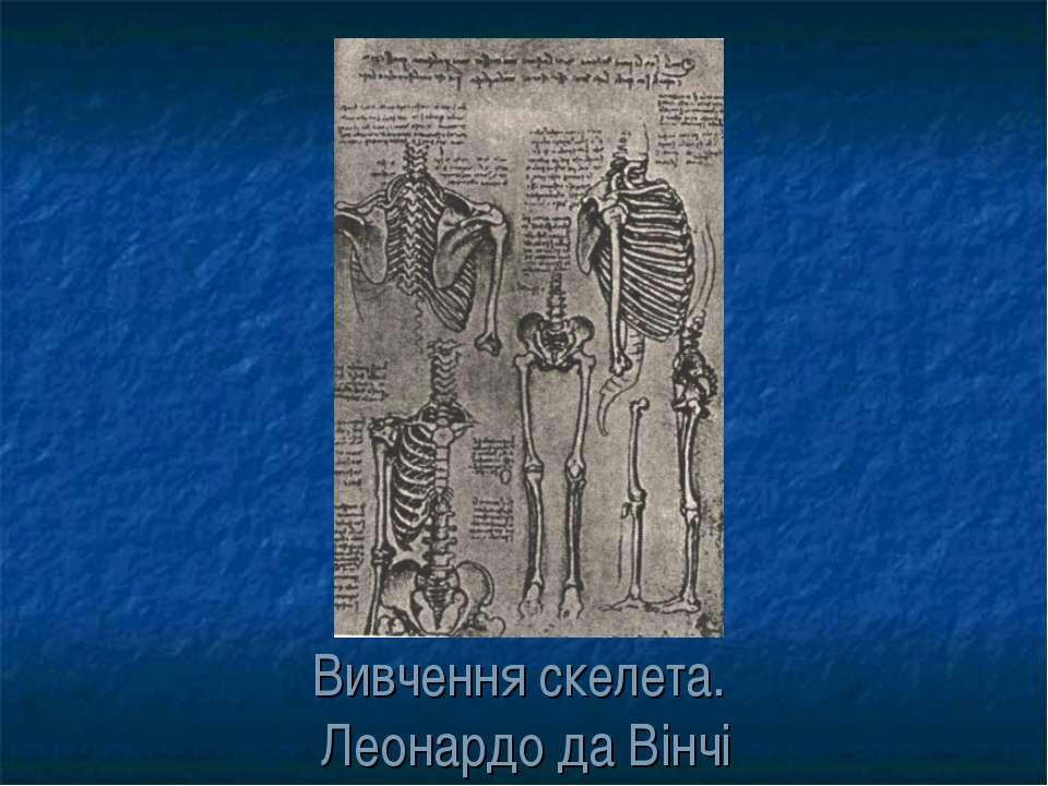 Вивчення скелета. Леонардо да Вінчі