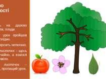 Дерево творчості Прикріпіть на дерево листя, квіти, плоди. Плоди – урок пройш...