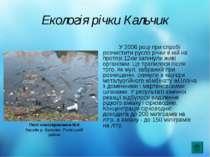 Екологія річки Кальчик У 2006 році при спробі розчистити русло річки в ній на...