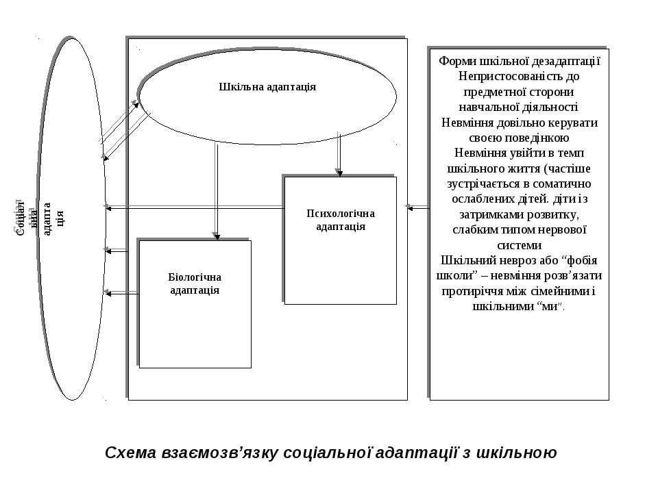 Схема взаємозв'язку соціальної адаптації з шкільною
