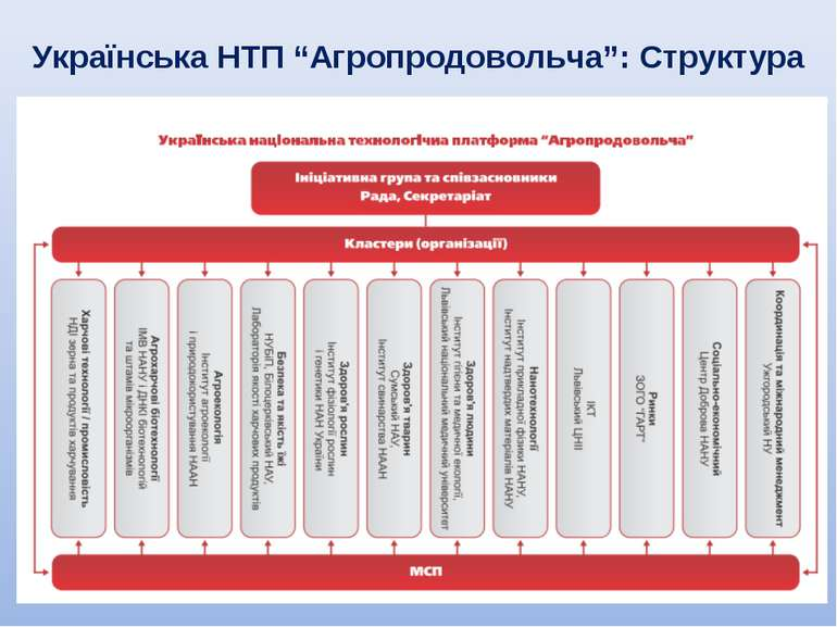 "Українська НТП ""Агропродовольча"": Структура МСП"