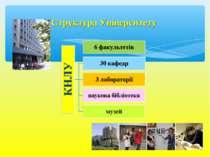 Структура Університету
