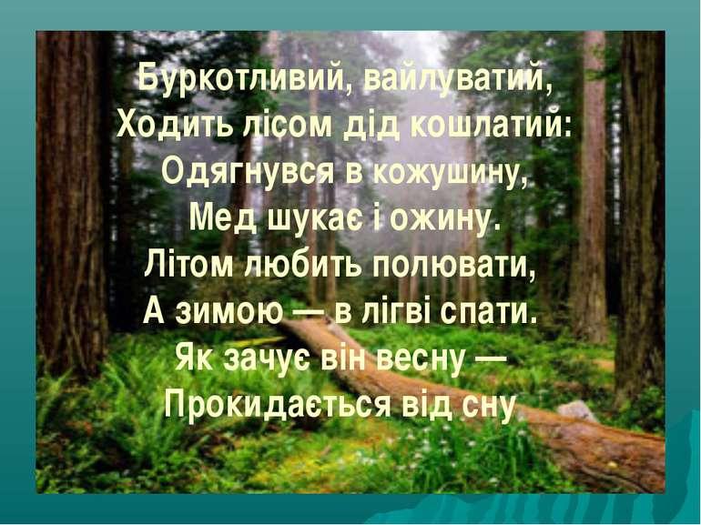 Буркотливий, вайлуватий, Ходить лісом дід кошлатий: Одягнувся в кожушину, Мед...