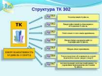 Структура ТК 302
