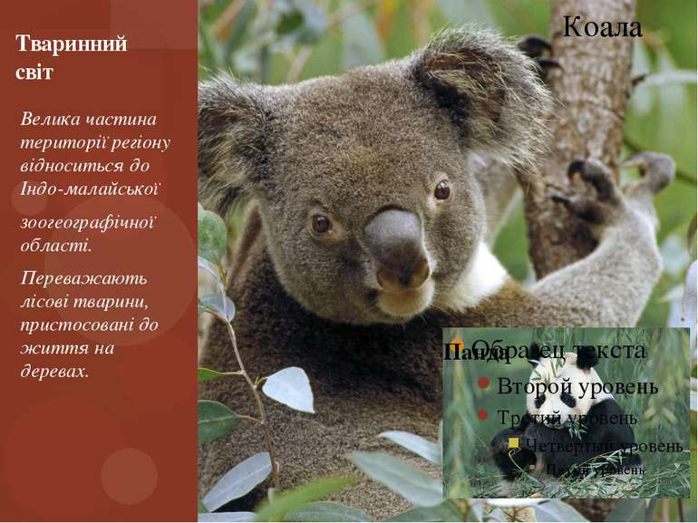 Велика частина території регіону відноситься до Індо-малайської зоогеографічн...