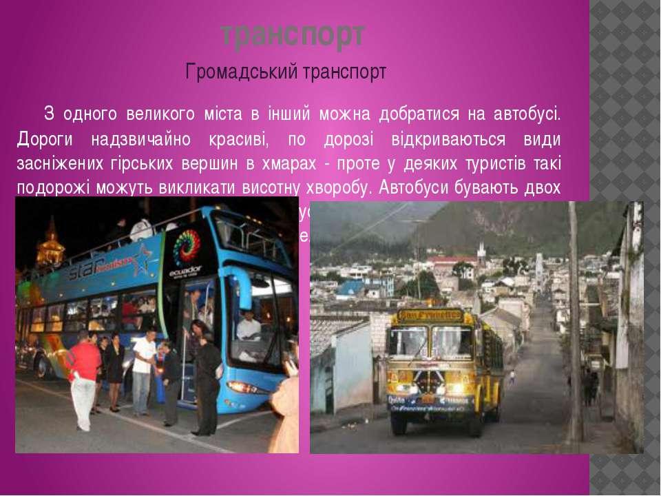 транспорт З одного великого міста в інший можна добратися на автобусі. Дороги...