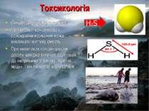 Токсикологія Сірководень дуже токсичний. При високій концентрації однократне ...