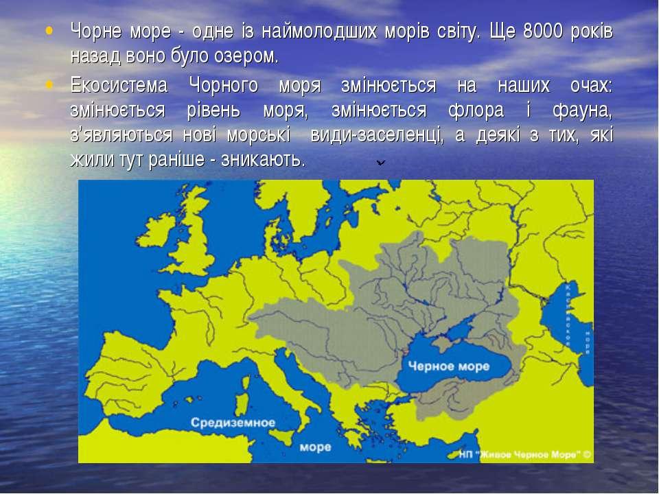 Чорне море - одне із наймолодших морів світу. Ще 8000 років назад воно було о...