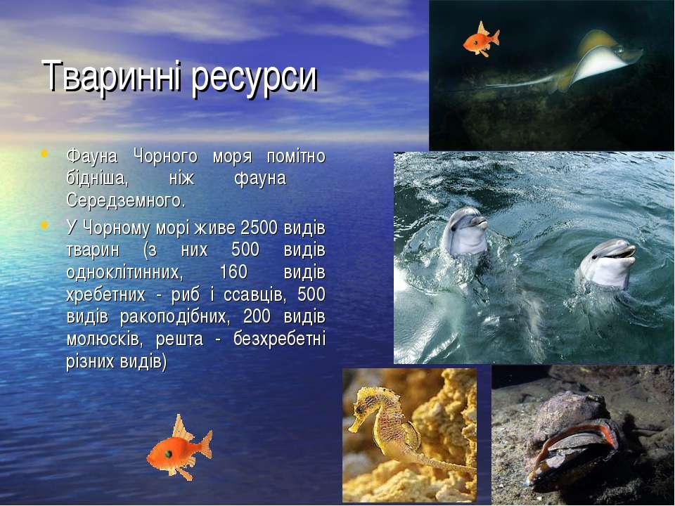 Тваринні ресурси Фауна Чорного моря помітно бідніша, ніж фауна Середземного. ...
