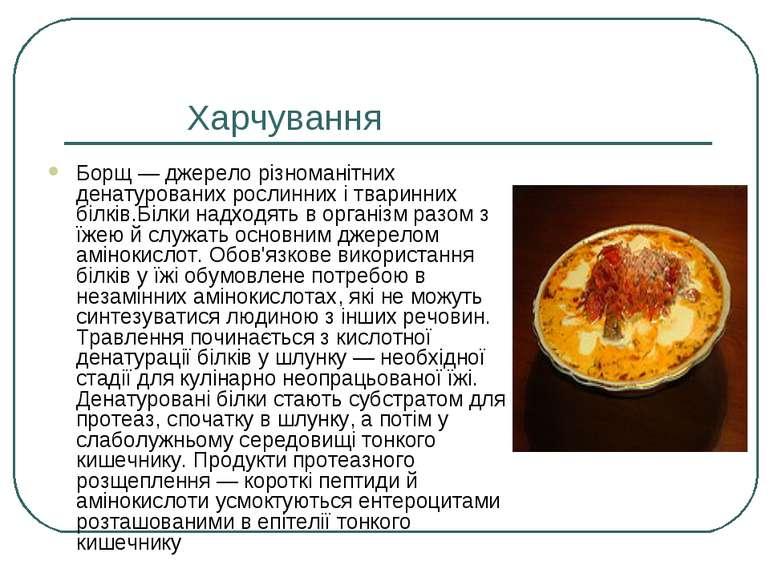 Харчування Борщ — джерело різноманітних денатурованих рослинних і тваринних б...