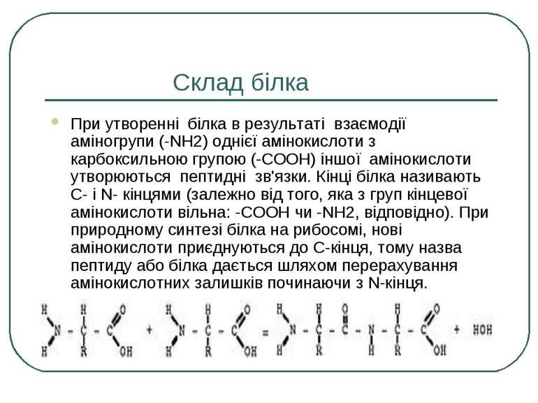 Склад білка При утворенні білка в результаті взаємодії аміногрупи (-NH2) одні...