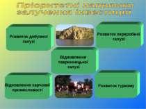 Розвиток добувної галузі Відновлення тваринницької галузі Розвиток туризму Ві...