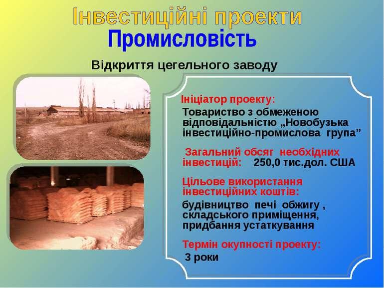 Відкриття цегельного заводу Ініціатор проекту: Товариство з обмеженою відпові...