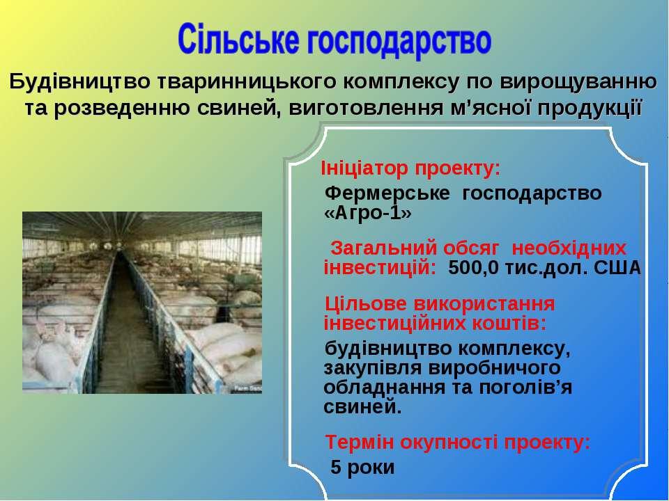Ініціатор проекту: Фермерське господарство «Агро-1» Загальний обсяг необхідни...